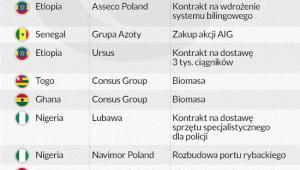 Polskie firmy w Afryce. Infografika: Dariusz Gąszczyk