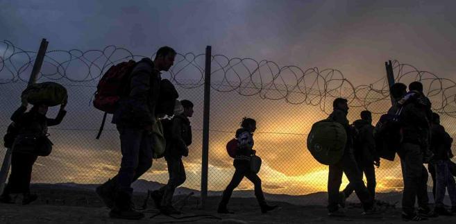 Imigranci koczujący w pobliżu granicy Grecji z Macedonią EPA/GEORGI LICOVSKI Dostawca: PAP/EPA.