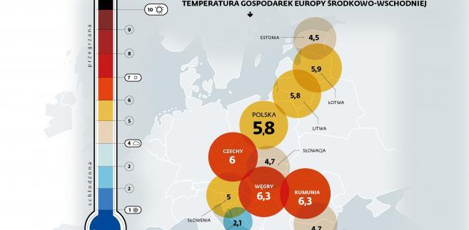 uff...jak goraco - temperatura gospodarek Europy Środkowo-Wsch. (c)