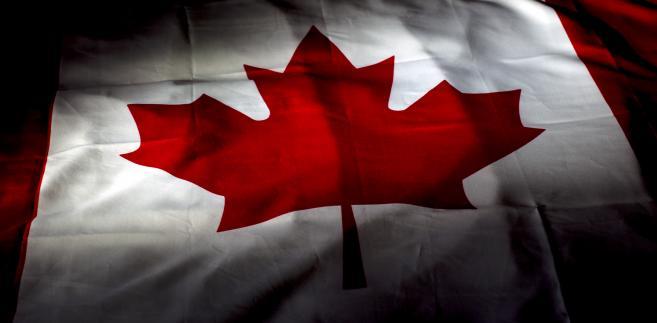 """sformułowanie """"polish SS"""" w kanadyjskiej książce"""