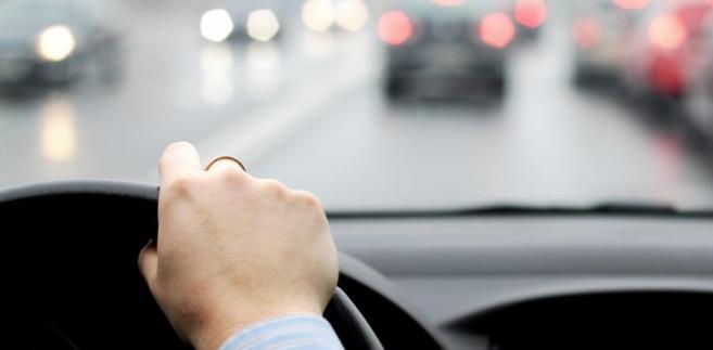 kierowca, prawo jazdy