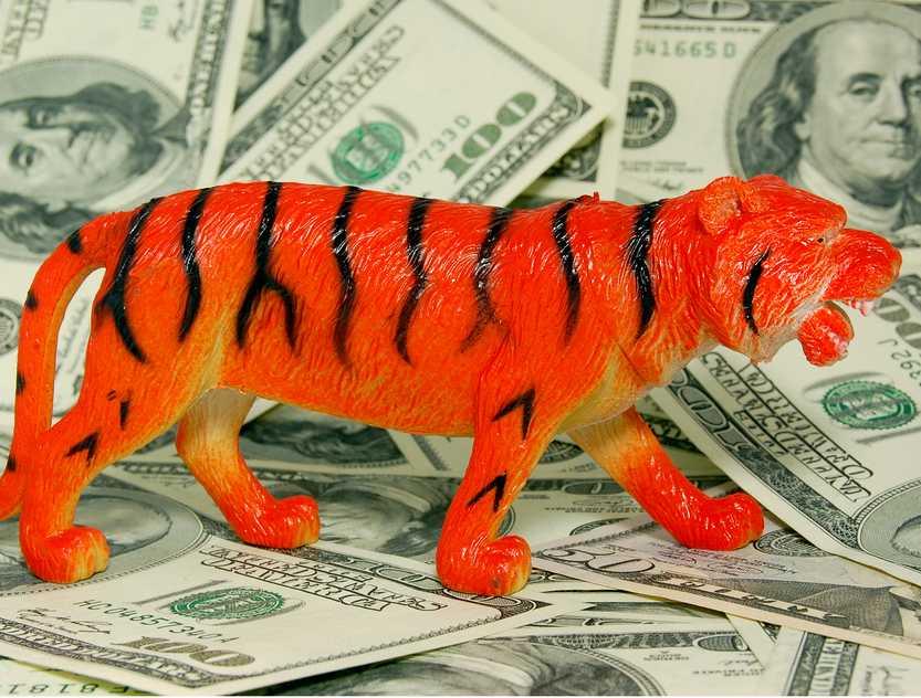 Premier Donald Tusk, który wziął w czwartek udział w turecko-polskim Forum Biznesu w Stambule, zachęcał tureckich przedsiębiorców do inwestowania w naszym kraju. Turcja i Polska mogą być tygrysami globalnej gospodarki - przekonywał szef polskiego rządu. Fot. Shutterstock