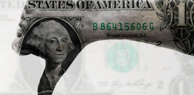 USA, Stany Zjednoczone, dolary Fot. Shutterstock